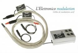 ELETTRONICO AVEC ALIMENTATION RCA